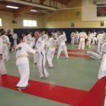 hapkido_2007-lehrgang-frankreich_0025