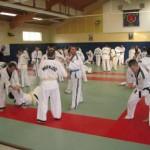 hapkido_2007-lehrgang-frankreich_0026