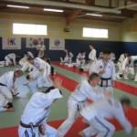 hapkido_2007-lehrgang-frankreich_0030