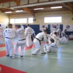 hapkido_2007-lehrgang-frankreich_0032