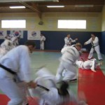 hapkido_2007-lehrgang-frankreich_0033
