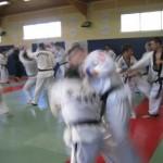 hapkido_2007-lehrgang-frankreich_0034