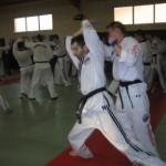 hapkido_2007-lehrgang-frankreich_0035
