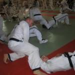 hapkido_2007-lehrgang-frankreich_0036