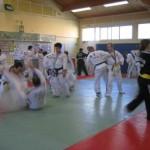 hapkido_2007-lehrgang-frankreich_0054