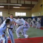 hapkido_2007-lehrgang-frankreich_0055