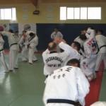 hapkido_2007-lehrgang-frankreich_0058
