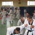 hapkido_2007-lehrgang-frankreich_0059