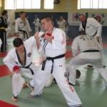 hapkido_2007-lehrgang-frankreich_0060