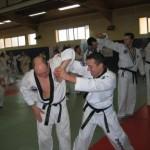 hapkido_2007-lehrgang-frankreich_0065
