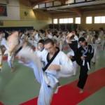 hapkido_2007-lehrgang-frankreich_0067