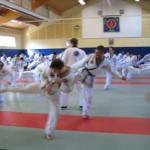 hapkido_2007-lehrgang-frankreich_0068