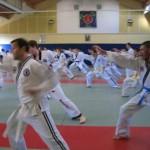 hapkido_2007-lehrgang-frankreich_0069
