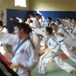 hapkido_2007-lehrgang-frankreich_0070
