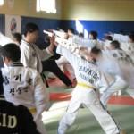 hapkido_2007-lehrgang-frankreich_0071