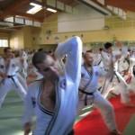 hapkido_2007-lehrgang-frankreich_0072