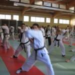 hapkido_2007-lehrgang-frankreich_0073
