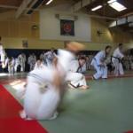 hapkido_2007-lehrgang-frankreich_0080