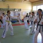 hapkido_2007-lehrgang-frankreich_0084