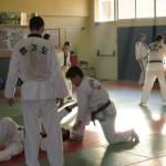 hapkido_2007-lehrgang-frankreich_0091