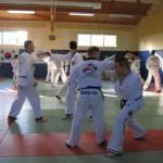 hapkido_2007-lehrgang-frankreich_0095