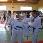 hapkido_2007-lehrgang-frankreich_0096