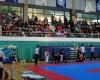 2011 Championship Korea