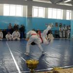 russia-seminar-16