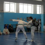 russia-seminar-17