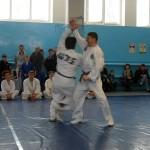 russia-seminar-18