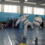 russia-seminar-29