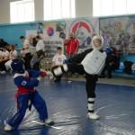 russia-seminar-36