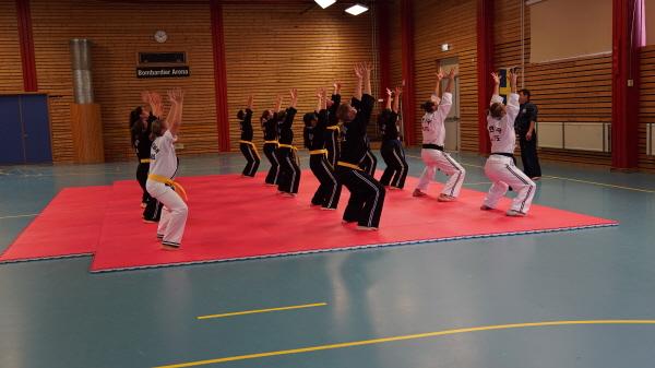 2017 Seminar SWEDEN